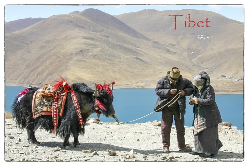 tibetpostcard